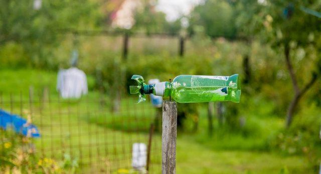 Трещотка для отпугивания кротов из пластиковой бутылки