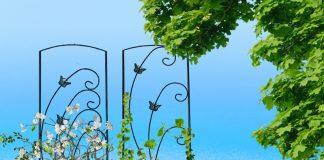 Опоры и шпалеры для растений