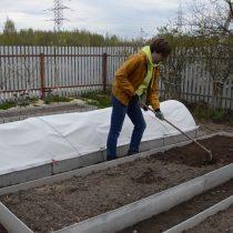Разрыхлите граблями почву на грядке. При необходимости внесите удобрения