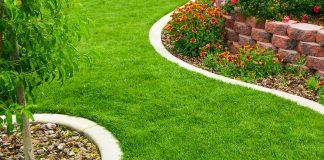 Изумрудный газон с весны до осени