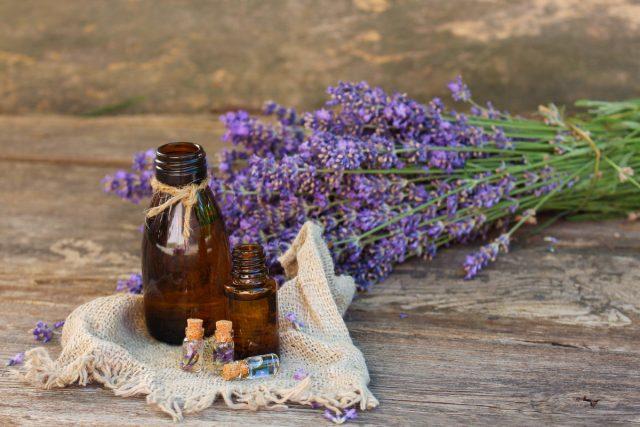 Основная ценность лаванды — целебное эфирное масло