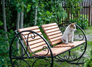 Особенности выбора кресла-качалки