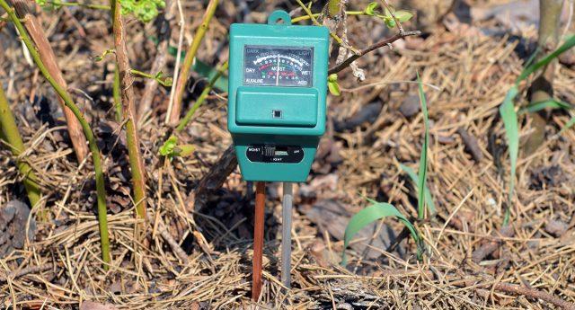Измерение кислотности почвы