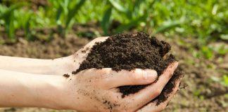 Как вернуть почве плодородие?