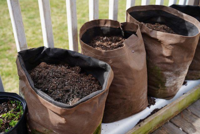 Специальные мешки для выращивания — хороший способ максимально использовать садовое пространство