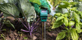 Как регулировать кислотность почвы и выращивать здоровые растения?