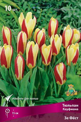 «Тюльпаны Кауфмана»