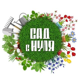 «Сад с нуля» лого