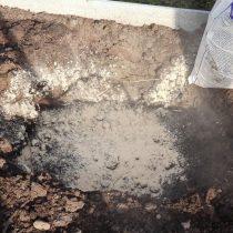 Выкопайте яму, сделайте дренаж и добавьте подкормки