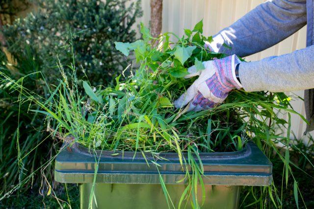 Утилизация растительных и кухонных отходов на участке — ничего лишнего!